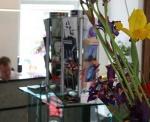 Preiswert im Hotel am Hofgarten in Düsseldorf