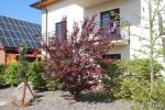 Radler Hotel Usedom-Bike-Hotel & Suites*** in Karlshagen