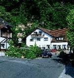 Berg`s Landhotel  in Dannenfels - alle Details