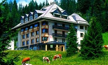 Familien Hotel Al Gallo Forcello.1530 - Albergo-Ristorante in Pontebba