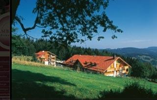 Motorrad Sporthotel Mitterdorf in Mitterfirmiansreut in Bayerischer Wald